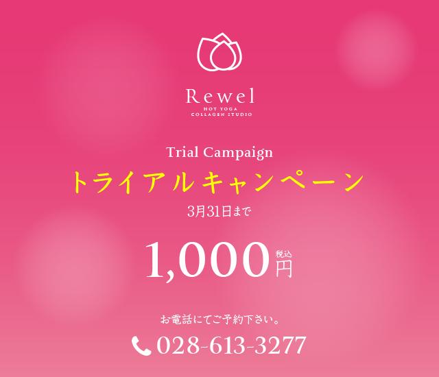 trial201503